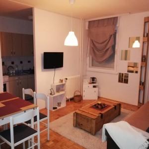 apartments belgrade cukarica apartment ada milipe16