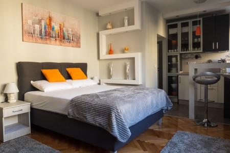 Studio Apartment Sanja Belgrade Center