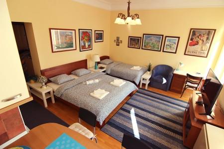 apartments belgrade vracar apartment park 114