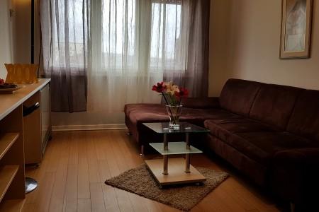 apartmani beograd savski venac apartman sava mala apartman sa besplatnim parkingom4