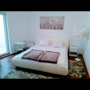 Two Bedroom Apartment Belvedere Lux Belgrade Center