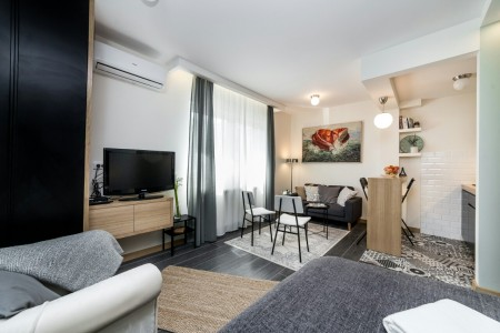 Studio Apartment Sarita Belgrade Center