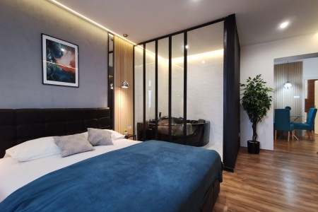 Studio Apartment Boni Belgrade Savski Venac