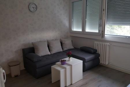 apartmani beograd novi beograd apartman paku 1 kod hotela jugoslavijanovi beograd2