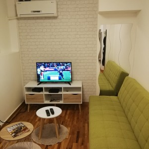 One Bedroom Apartment Green Star Belgrade Vracar