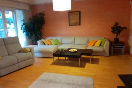 Petosoban Apartman Luxury Beograd Rakovica