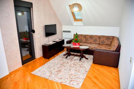 apartmani zlatibor planina apartman aleksandar lux25