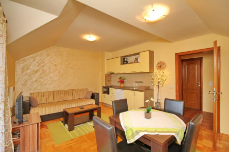apartments zlatibor planina apartment vila velickovic3