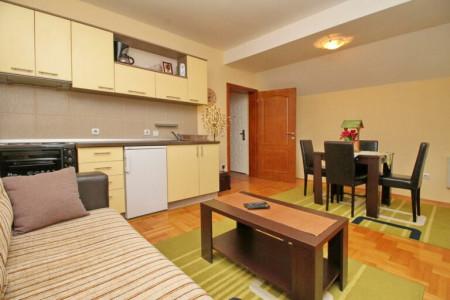 apartments zlatibor planina apartment vila velickovic4