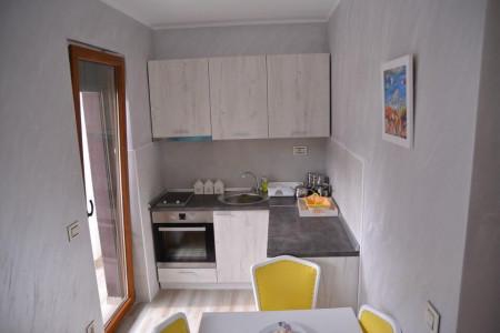 apartmani zlatibor planina apartman andric4