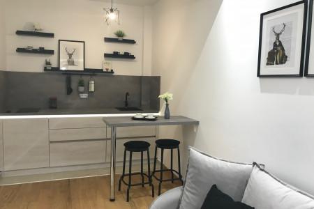 apartmani zlatibor okolno mesto apartman vila pekovic apartman s683