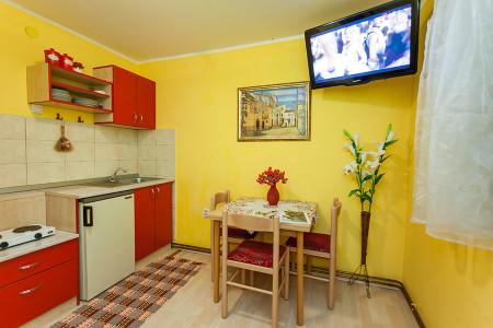 apartmani zlatibor okolno mesto apartman vila milena leptir2