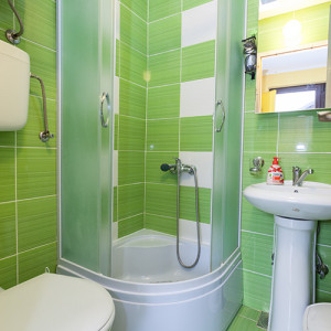 apartments zlatibor okolno mesto apartment vila milena soba5