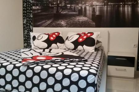 Studio apartmana Maca 4 sa Bracnim Krevetom Novi Sad Petrovaradin