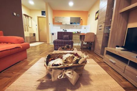 apartments novi sad rotkvarija apartment vas raj 15