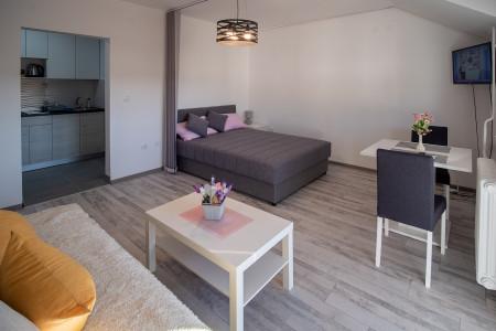 Jednosoban Apartman Sara NS - Naselje Bistrica - OnLine Rezervacije