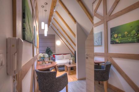Studio Apartman Natural Wood 3 Zlatibor Vlaovina - Vila Natural Wood od Drveta