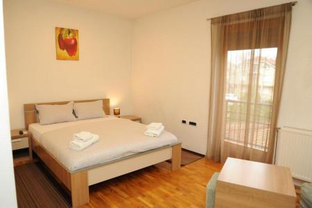 Studio apartment Vanessa 2 Novi Sad Slana Bara