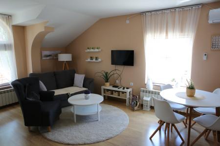 Dvosoban Apartman Danube 6 Novi Banovci