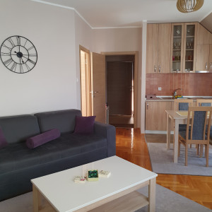 apartments zlatibor okolno mesto apartment goga3