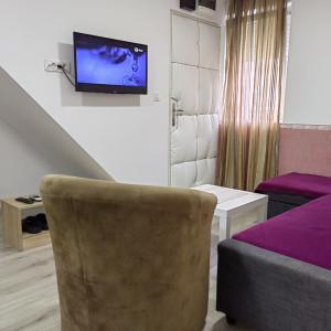 Two Bedroom Apartment Tea M Belgrade Zemun