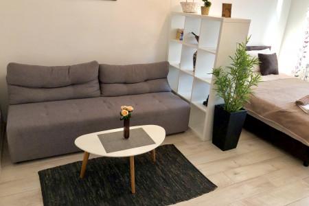 apartmani beograd centar apartman modern studio institut majka i dete6