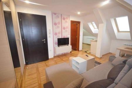 apartmani zlatibor okolno mesto apartman apartman rakanovic zlatibor5