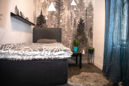 apartmani novi sad stari grad apartman soba 2 b2311