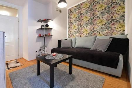 apartmani novi sad stari grad apartman ema flower7