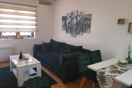 Two Bedroom Apartment Pinevile 4 Zlatibor
