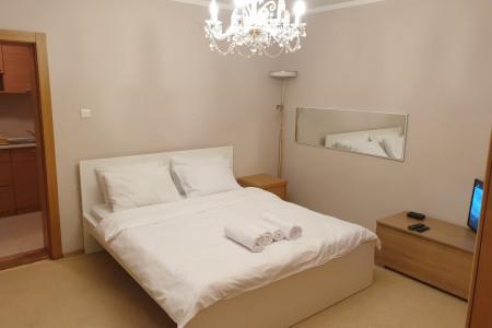 Two Bedroom Apartment Pool VIla Novi Sad Petrovaradin