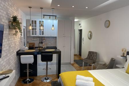 Studio Apartman Sanja Gold Beograd Centar