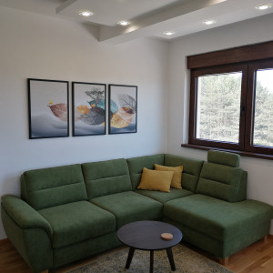 Dvosoban Apartman DLT Lux 2 Zlatibor Okolno Mesto