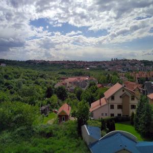 Lekino brdo - granica Vračara i Voždovca