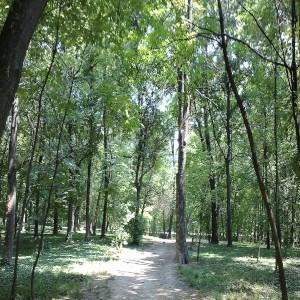 Udaljenost stana na dan Lekino brdo od Šumica