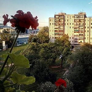 Apartmani u blizini ulice Agostina Neta - pregled ponude