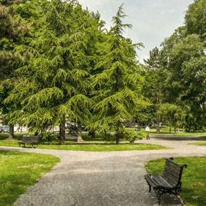 Stan na dan u blizini Pionirskog parka - pregled ponude
