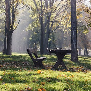 Mirijevo - naselje nadomak Zvezdarske šume