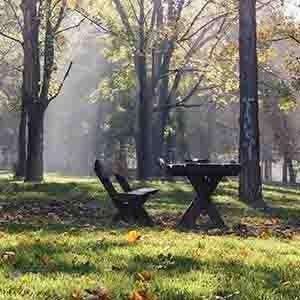 Stan na dan Zvezdara u blizini Zvezdarske šume