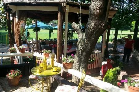 restoran pahuljica restorani beograd zvezdara4