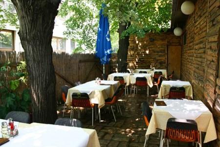 restoran sabacki slatinac restorani beograd vozdovac3