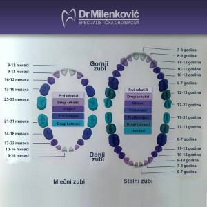 dr milenkovic dentist belgrade zvezdara2