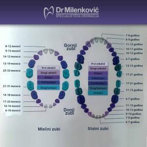 dr milenkovic stomatoloske ordinacije beograd zvezdara2