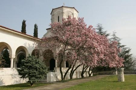 dvorska crkva svetog apostola andreja prvozvanog znamenitosti beograd savski venac