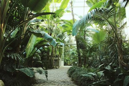 botanicka basta jevremovac belgrade attractions centar