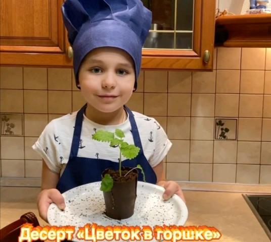 """Десерт """"Цветок в горшке"""""""