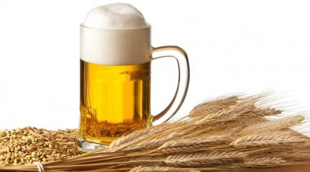 Домашнее пиво из ячменя