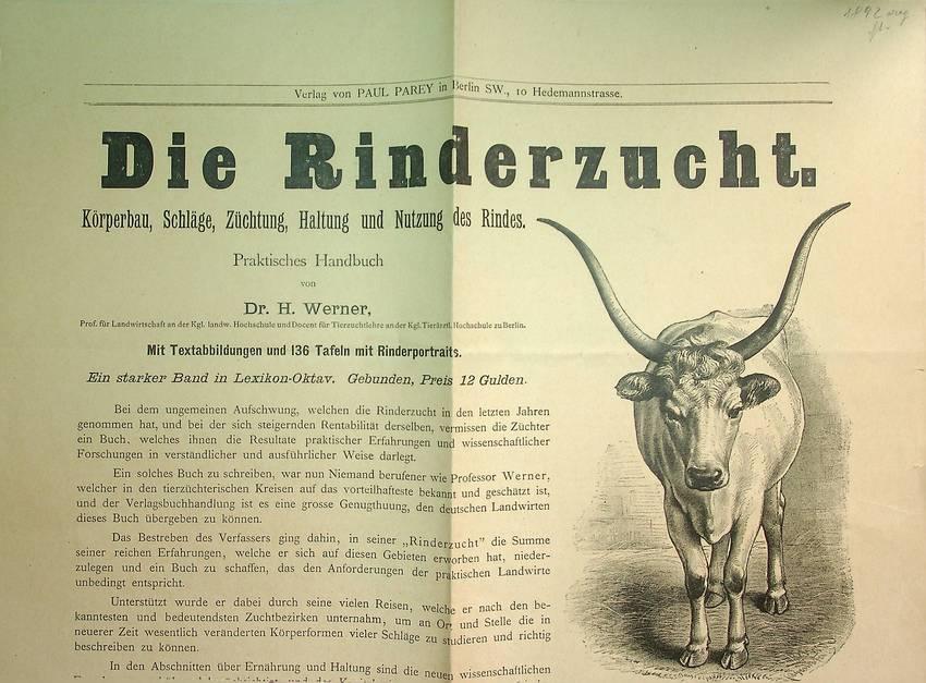 Die Rinderzucht. Körperbau, Schläge, Züchtung, Haltung und Nutzung des Rindes. Praktisches Handbuch...