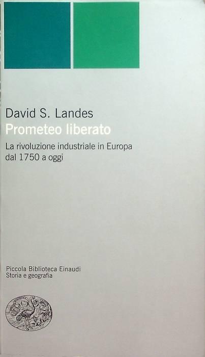 Prometeo liberato: trasformazioni tecnologiche e sviluppo industriale nell'Europa occidentale dal 1750 ai giorni nostri.