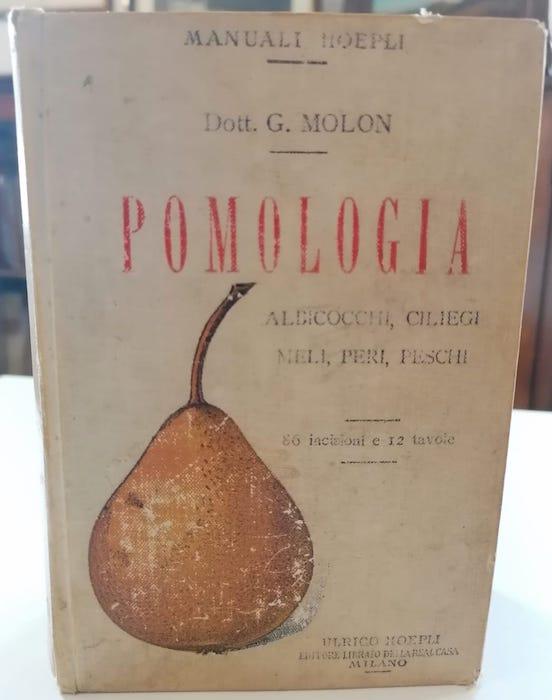 Pomologia: descrizioni delle migliori varietà di albicocchi, ciliegi, meli, peri, peschi.